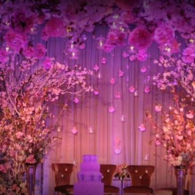 Aura Struck Events & Weddings